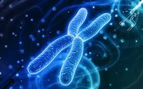 人の子の現れる日にはあなたのDNAが問われる