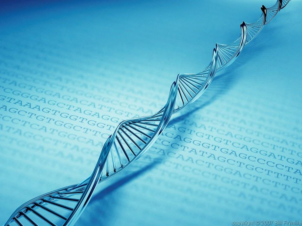 DNAは言葉により組み替えられる