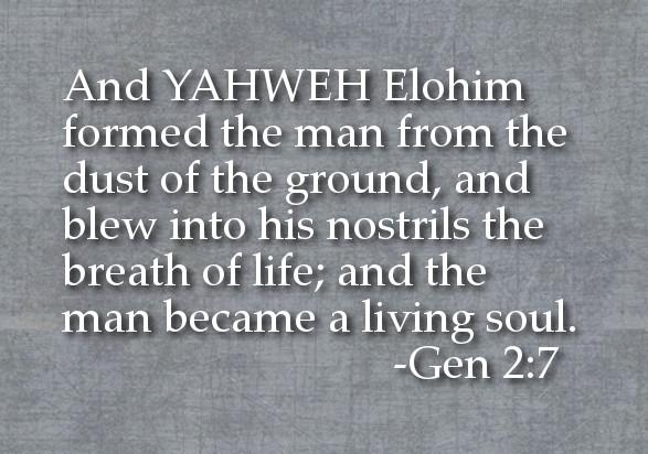 御名の重要性-YHWH ELOHIM