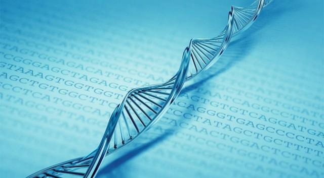 良質なバイブレーションに浸ること-バイブレーションがDNAに影響する-