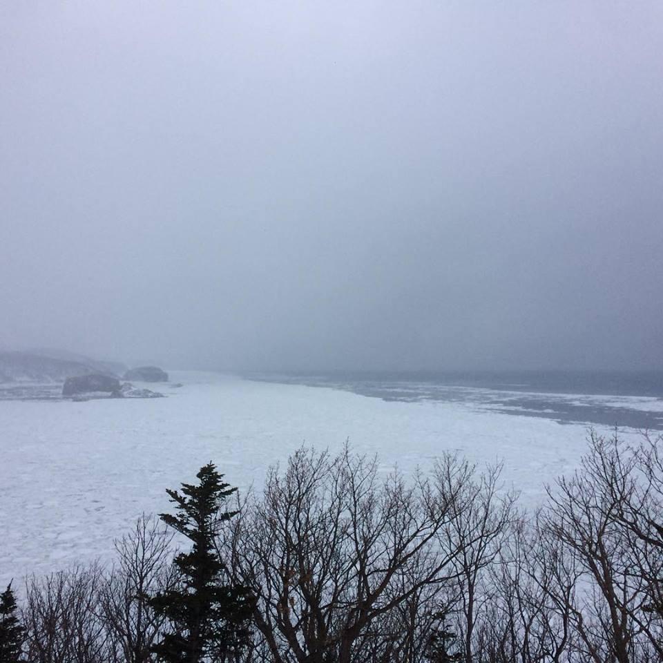 北海道流氷ツアーに行ってきました