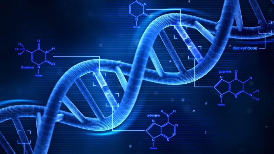 創世記を裏付けるDNA研究結果