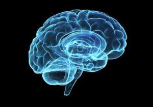 脳をアイドリングするとDM回路が活性化する