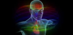 愛のサブスタンスはブレイン-ハート・コネクションで実体化される