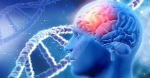 CLIP:DNAは言葉により組み替えられる-バイブレーションのパワー-