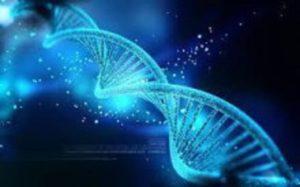 旧約の聖徒はYahawehのDNAをインヒュージョンされたわれわれにより完成される
